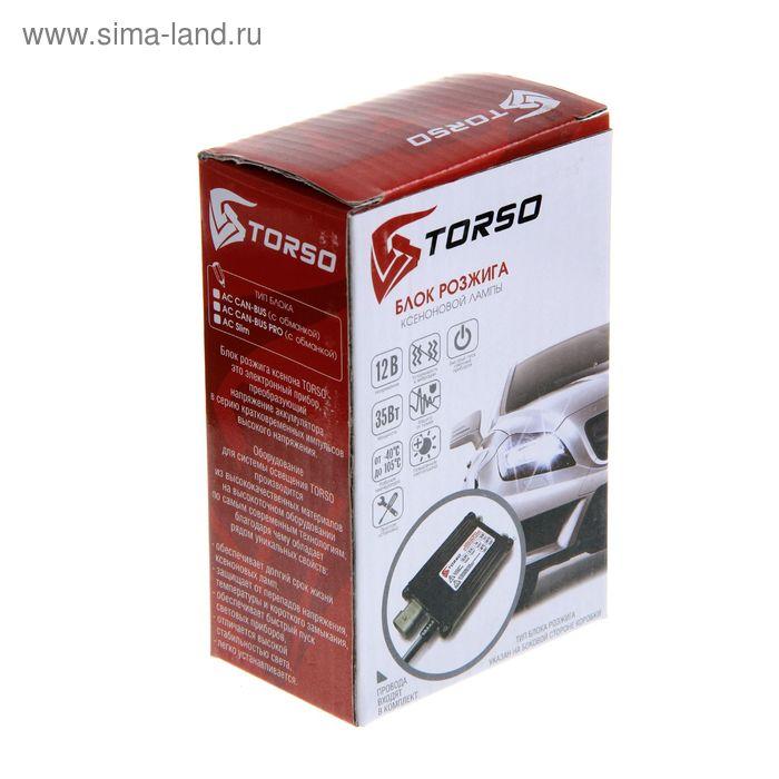 Блоки розжига ксенона TORSO, АС CAN-BUS PRO, с обманкой, с проводами, 35 Вт, 12 В