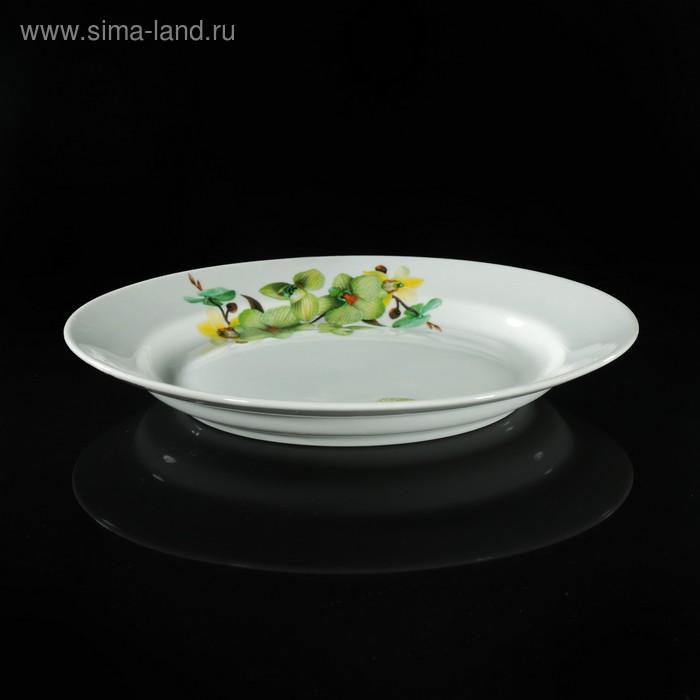 """Тарелка мелкая 24 см с гладким краем """"Орхидея зеленая"""""""