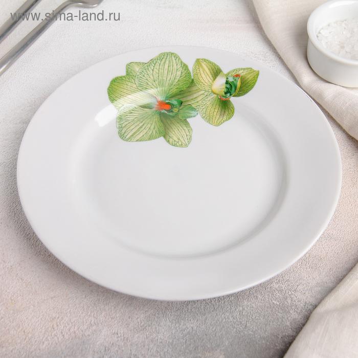 """Тарелка мелкая d=20 см с гладким краем """"Орхидея зеленая"""""""