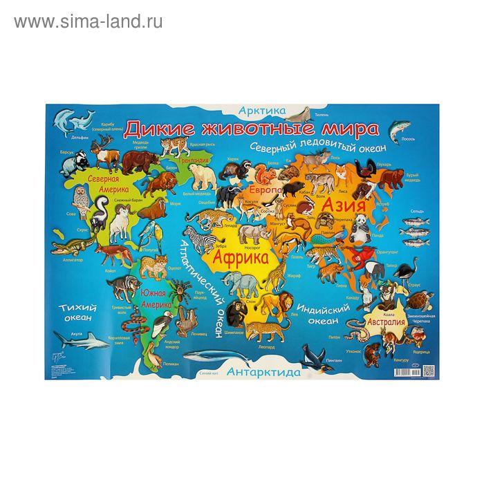 """Плакат """"Дикие животные"""" карта мира"""