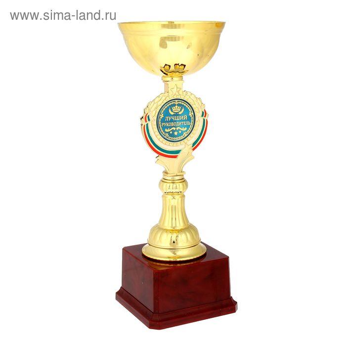 """Кубок """"Лучший руководитель"""""""