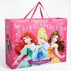 """Пакет ламинированный """"Подарок для Принцессы"""", Принцессы, 46 х 61 см"""