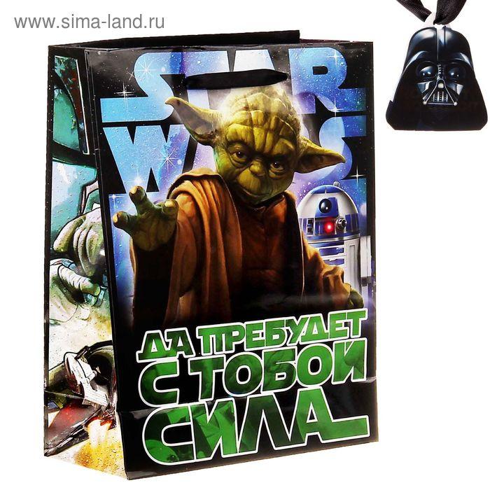 """Пакет ламинат вертикальный """"Да прибудет с тобой сила"""", Звездные войны, 18 х23 см, + мини-открытка"""