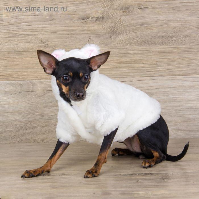 Шубка белая с капюшоном-ушками для собак, размер М (ДС 25 см, ОГ 36 см, ОШ 26 см)