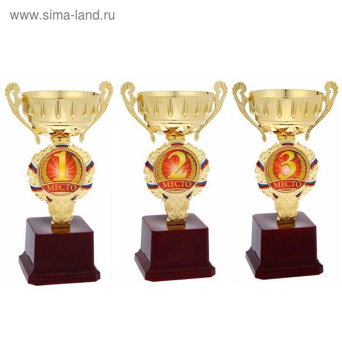 """Кубок спортивный """"1 место"""""""