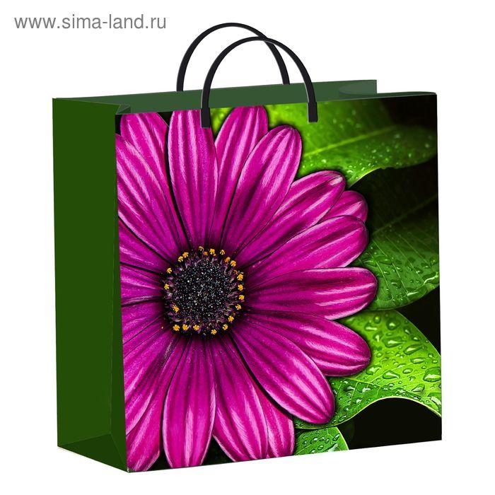 "Пакет ""Фиолетовый цветок"", мягкий пластик, 30х30 см, 137 мкм"