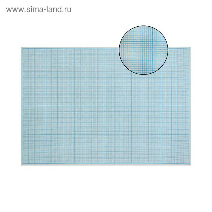Масштабно-координатная бумага, 65 г/кв.м, формат А4, 20шт