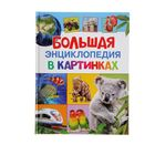 «Большая энциклопедия в картинках»