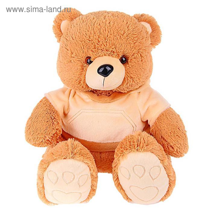 """Мягкая игрушка """"Медведь Эдди в кофточке"""""""