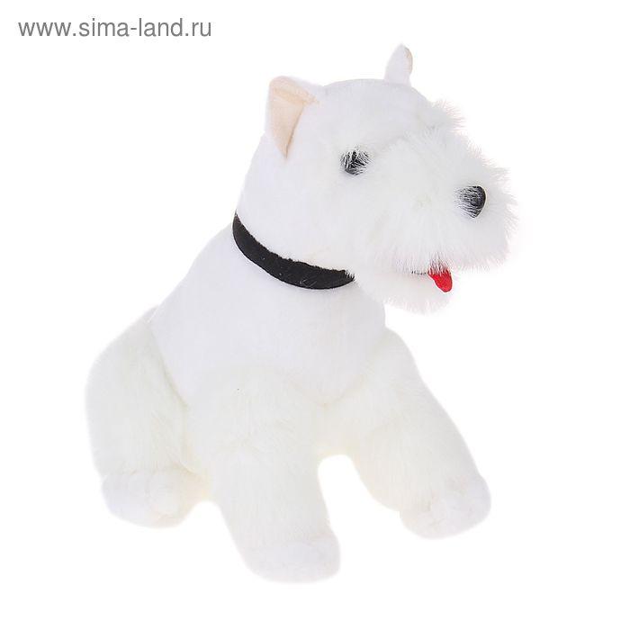 Мягкая игрушка «Собака Плэж»